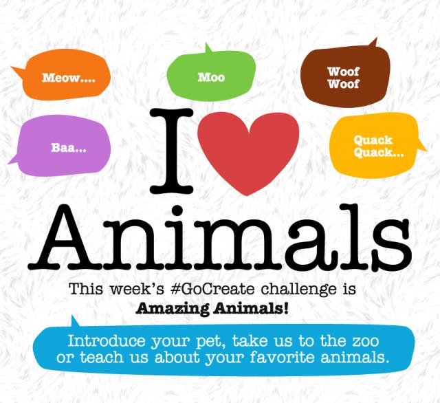 GoCreate Animals
